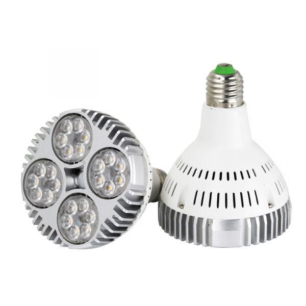 AW-PA3224 LED par30