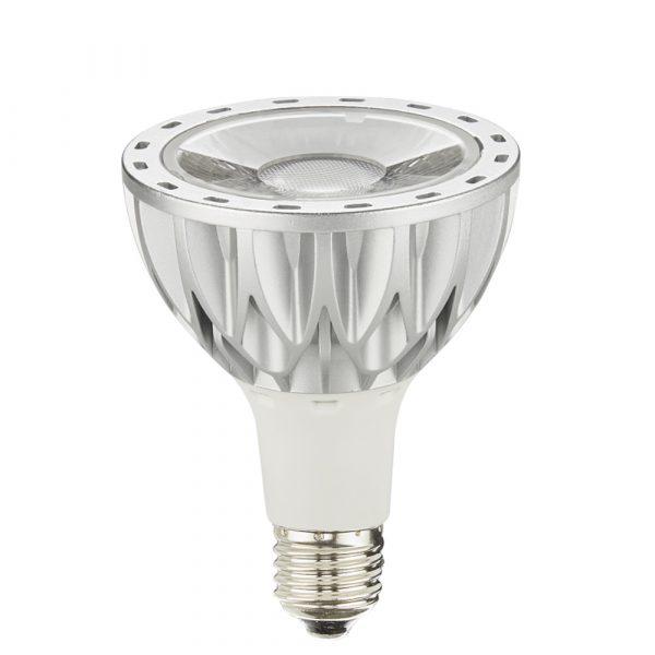 AW-PA3001 COB LED flood lamp 1