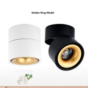 AW-DL0205 Surface mounted downlight 1