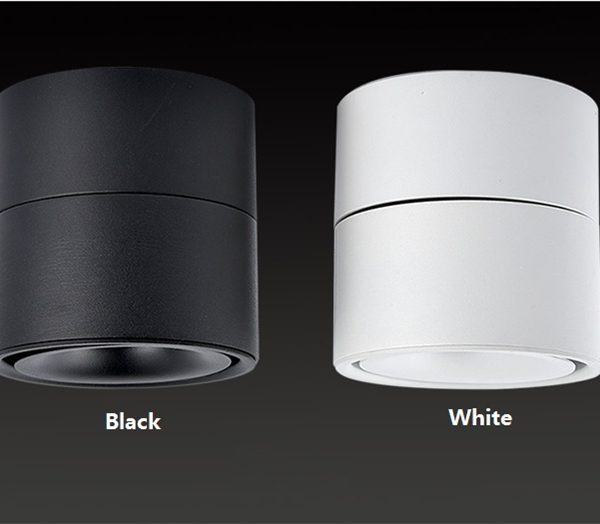 AW-DL0205 Surface mounted downlight (3)